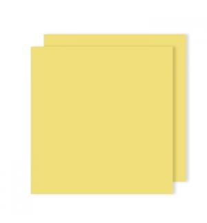 Cartolina 240gr 25Folhas 50x65cm Canson Iris Amarelo Limao