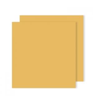 Cartolina 240gr 25Folhas 50x65cm Canson Iris Couro