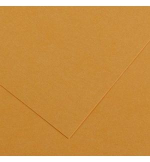 Cartolina 185gr 1 Folha 50x65cm Canson Iris Couro