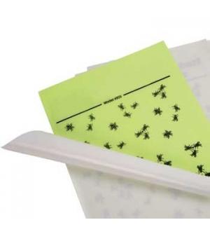 Recarga Adesiva em Lamina de Insectos 4x6un