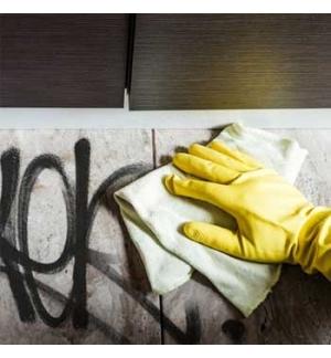 Spray Removedor Graffiti 400ml