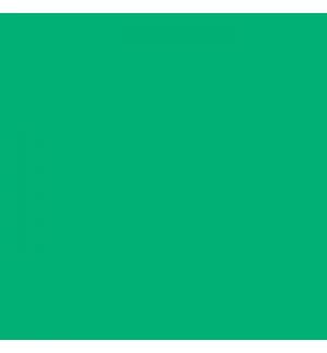 Cartolina 185gr 1 Folha 50x65cm Canson Iris Verde Hortela