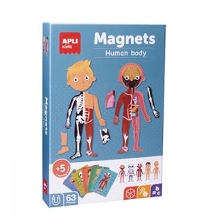 Jogo Educativo Magnético Apli Corpo Humano 63 Peças