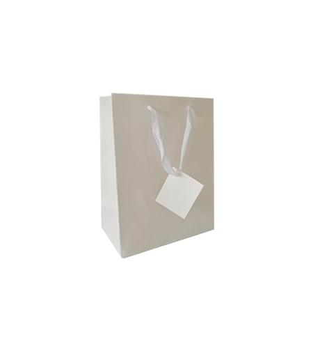 Saco Papel Branco 23x18x10cm c/Asa 1un