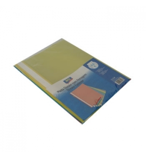 Classificador Plastico Capa Transp c/Ferragem Pack 5 sortido