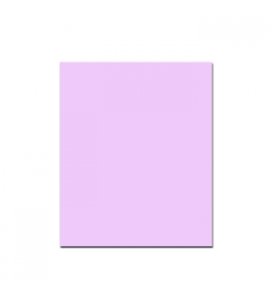 Cartolina 250gr 1 folha 50x65cm Rosa (7)