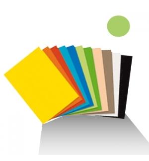 Cartolina 180gr 1 folha 50x65cm Verde Palido (3A)