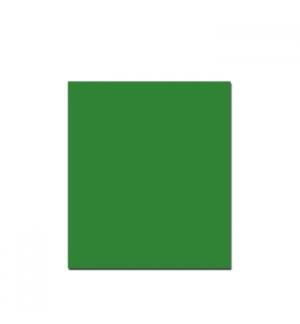 Cartolina 250gr 1 folha 50x65cm Verde (3)