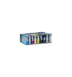 Tinteiro Fotografico Stylus Pro 4800/4880 Cinzento Claro
