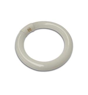 Lampada fluorescente circular 22W para VTLAMP2
