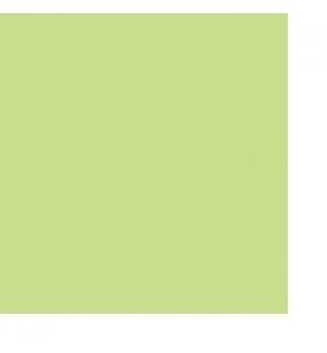 Cartolina 180gr 1 Folha A4 Verde Palido (3A)