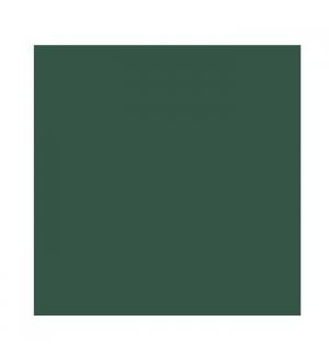 Cartolina 185gr 1 Folha 50x65cm Canson Iris Verde Amazonas