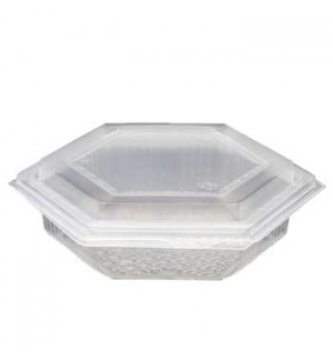 Embalagem Alimentar PP Plástico Hexagonal 250gr 60un